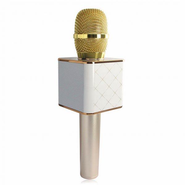 Karaoke/Draadloze microfoon met speaker Bluetooth Goud-0